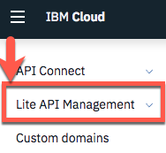 lite-api-management